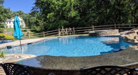 Freeform Pool with Tanning Ledge and Swim Up Bar
