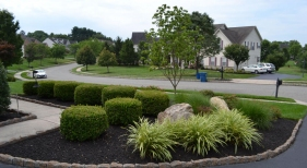 Driveway-Landscaping-Bed-area