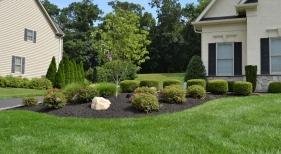 Front-Yard-Landcape