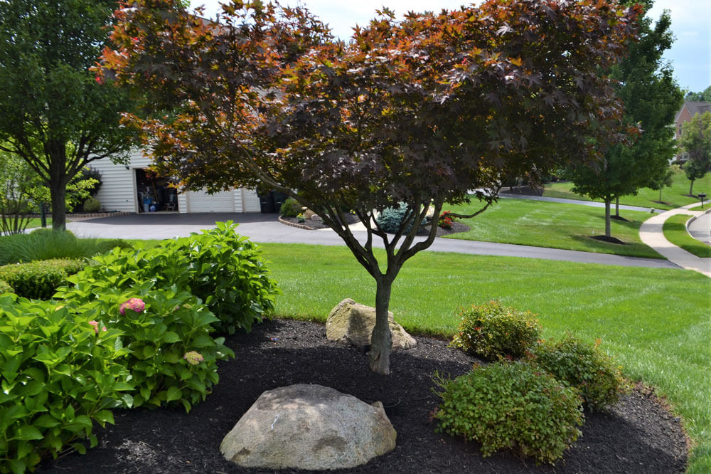 Landscaping Photos Montgomery County Lawn Care Skippack