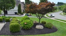 Landscaping Bed