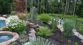 Pool Landscape Beds
