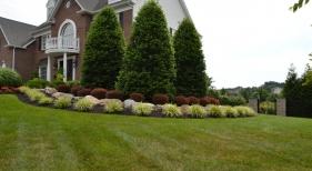 Side-Landscaping