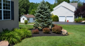 Side-yard-landscaping