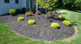 bed-landscaping