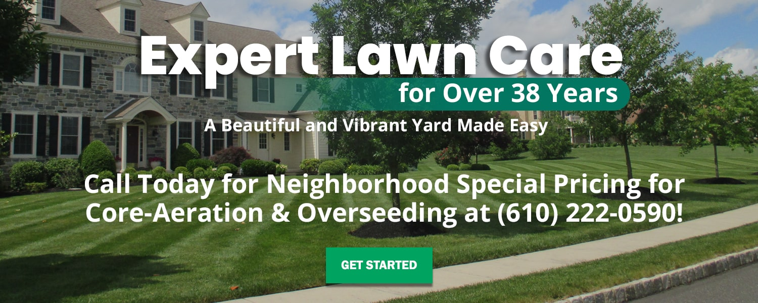 Expert Lawn Care